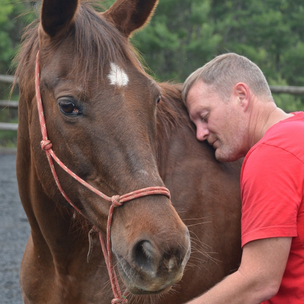 How much do Equine Assisted Therapy and Learning programs cost to operate? - Running a quality, year-round program for either Veterans or At-risk youth costs approximately $1200/month.