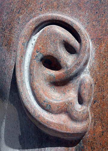 Without a mentor my ear might as well be made of stone. Thanks to Anja Jonsson for use of this image Ear of a stone head under Creative Commons.