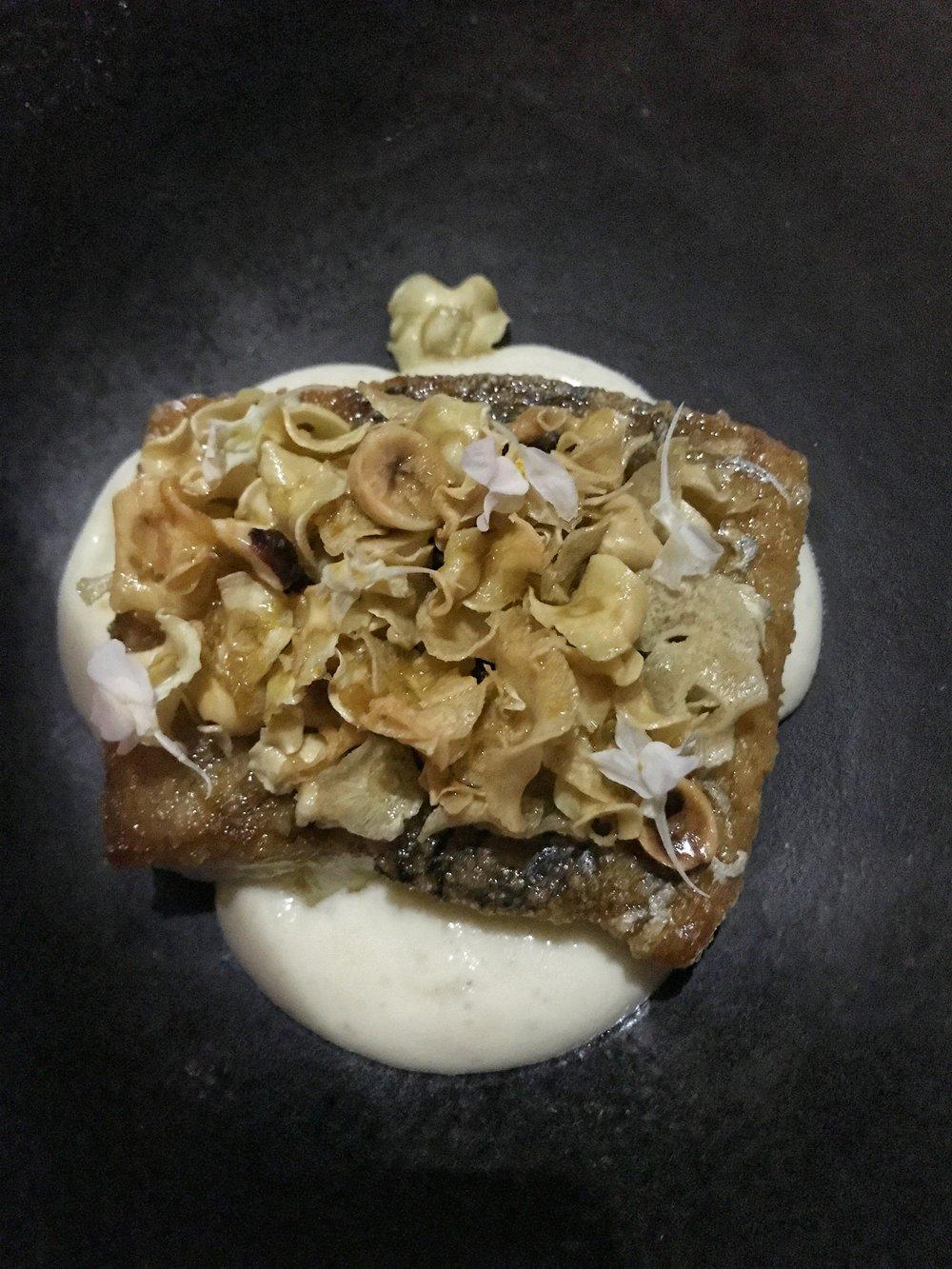 The Wild Cape York barramundi with crisp parsnip & hazelnuts and whole lemon puree.