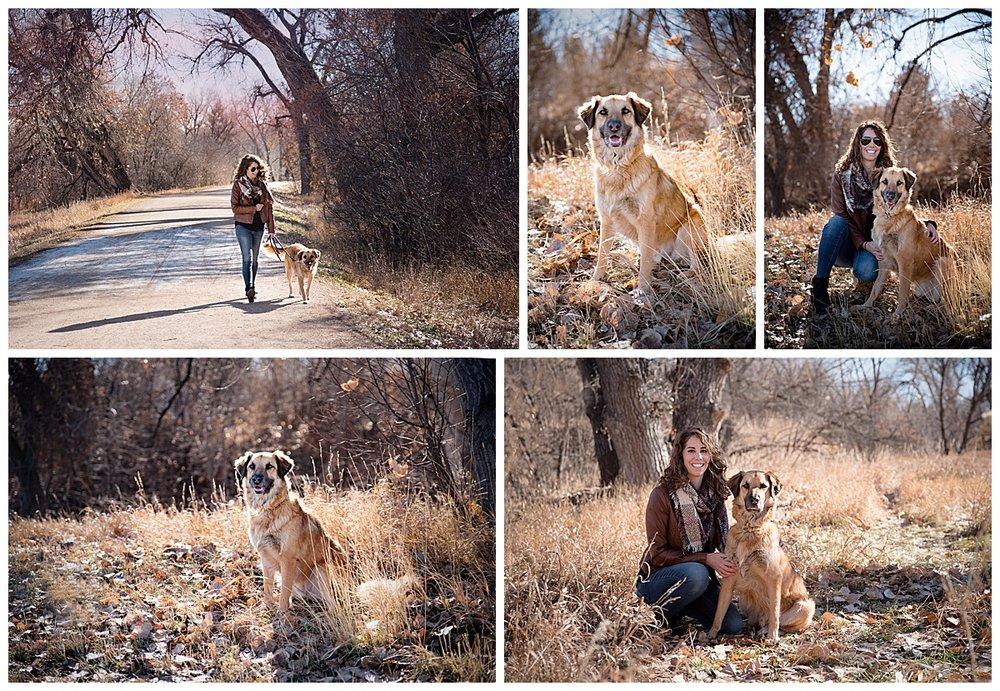 dog-photography-centennial-colorado-strider-2.jpg