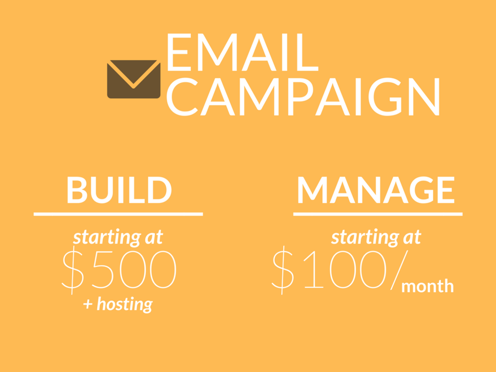 email marketing campaign, build platform, custom templates, starting at $500, hosting fees not included , starting at $100 per month to manage, integrate lists and forms, automated work flows, analytics reporting