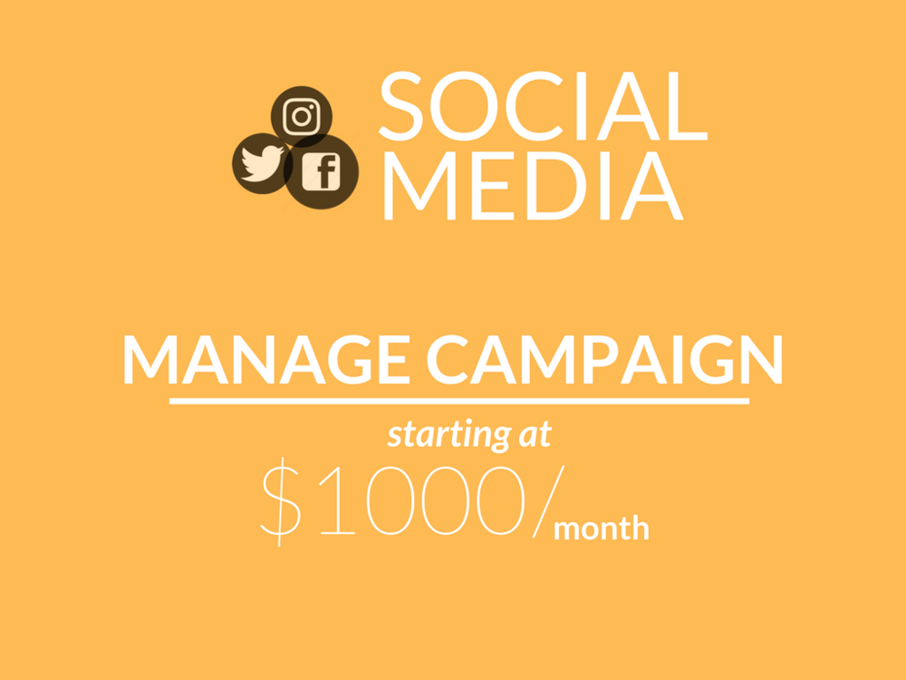Social media campaign, manage social media campaign, starting at 1,000 a month, analytics reporting, posting 3 times per week, posting 5 times per week, content provided by business