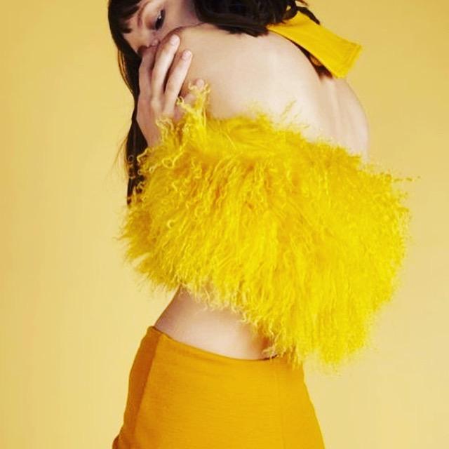 yellowfur1.jpg