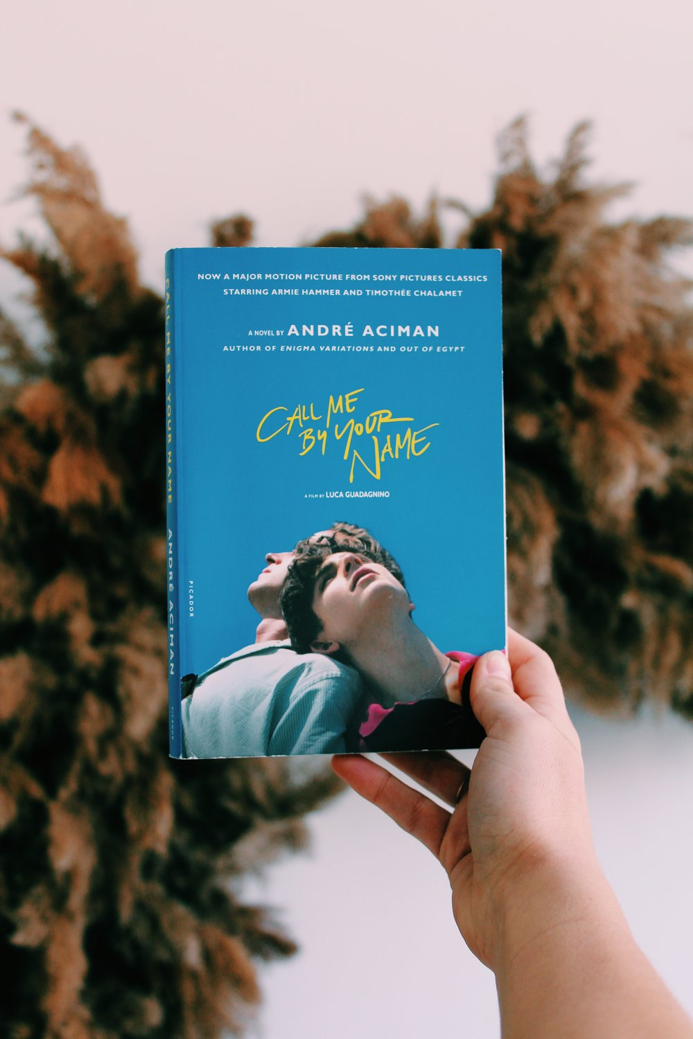 Call Me By Your Name Andre Aciman