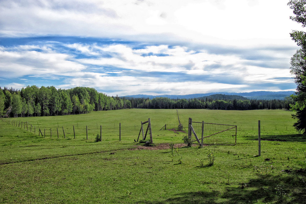 Pasture at Entrance Ranch