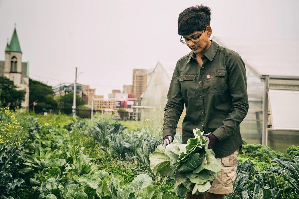 Field Working Woman