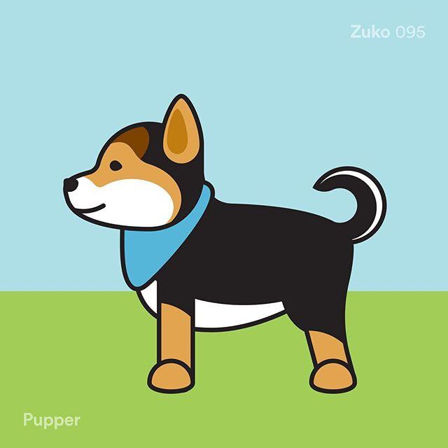 095 / Zuko - Pupper