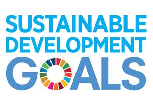 E_SDG_logo_No+UN+Emblem_square_rgb copy.png
