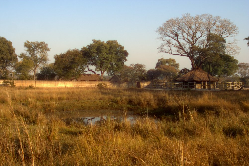 The Elephant Orphanage, Kafue