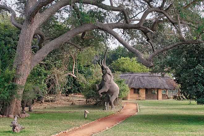 Campsite in Livingstone, Zambia