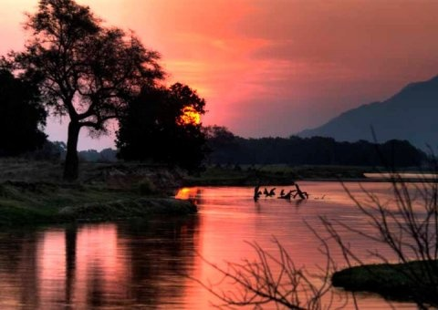 Mana Pools sunset, Zimbabwe