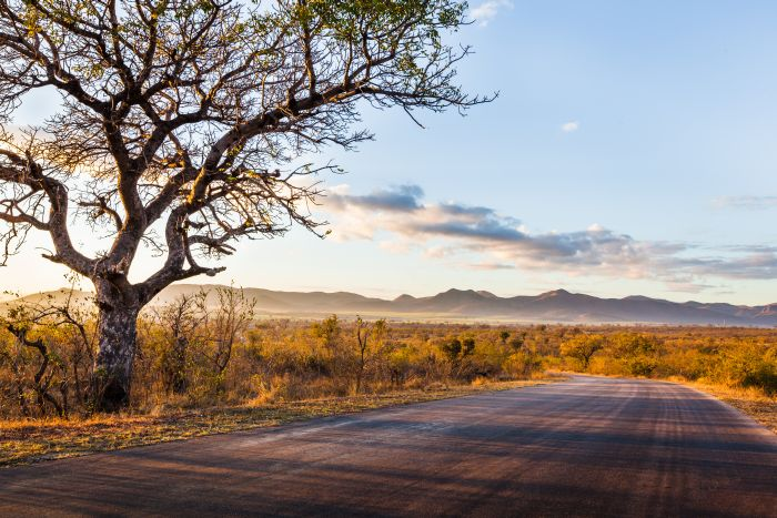 Scenic road in Africa