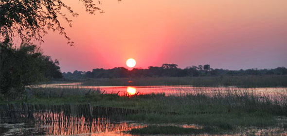 Thamalakane River, Maun, Botswana