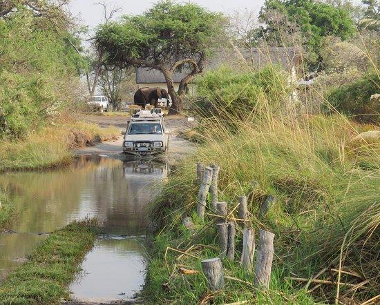 Third Bridge campsite, Moremi, Botswana