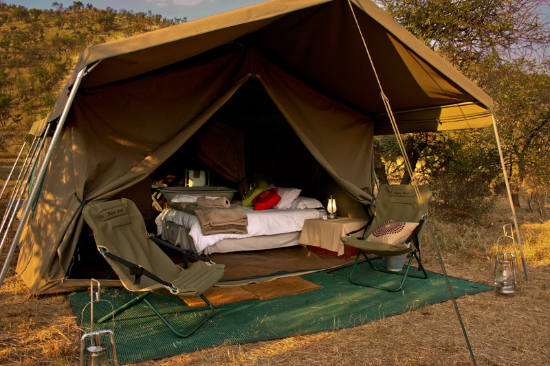 sleeping tent on safari walking trail in south africa