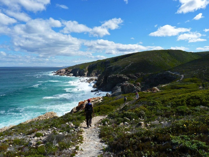 whale trail path next to sea in south africa
