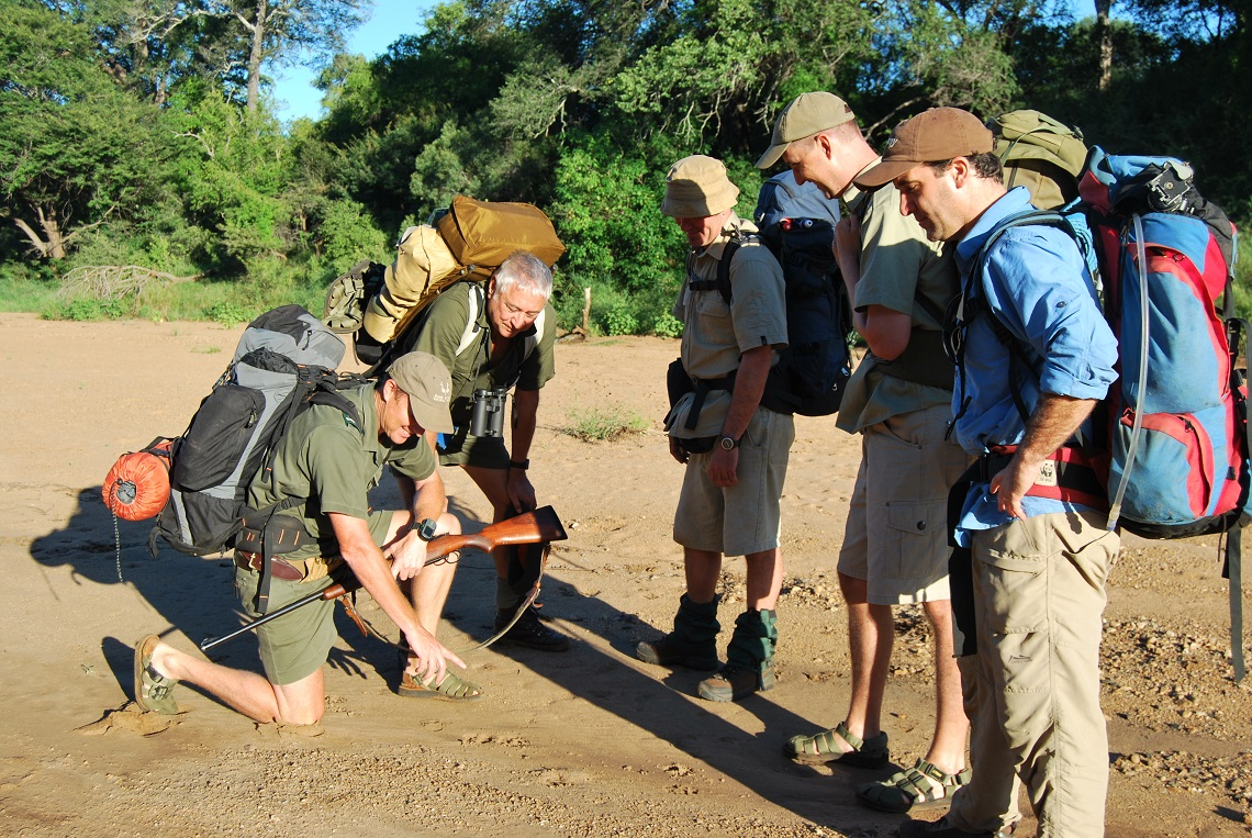 Our guide explains lion spoor we found in the river bed on the Sweni Trail