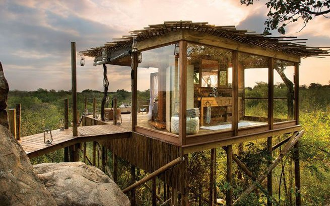 lion sands ivory lodge south africa