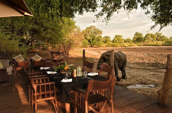 kanga camp elephant deck mana pools zimbabwe africa