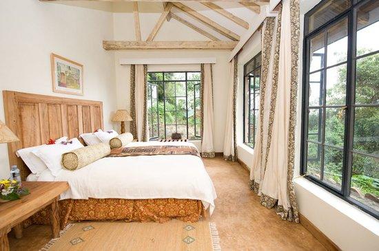 clouds mountain lodge room accommodation uganda africa