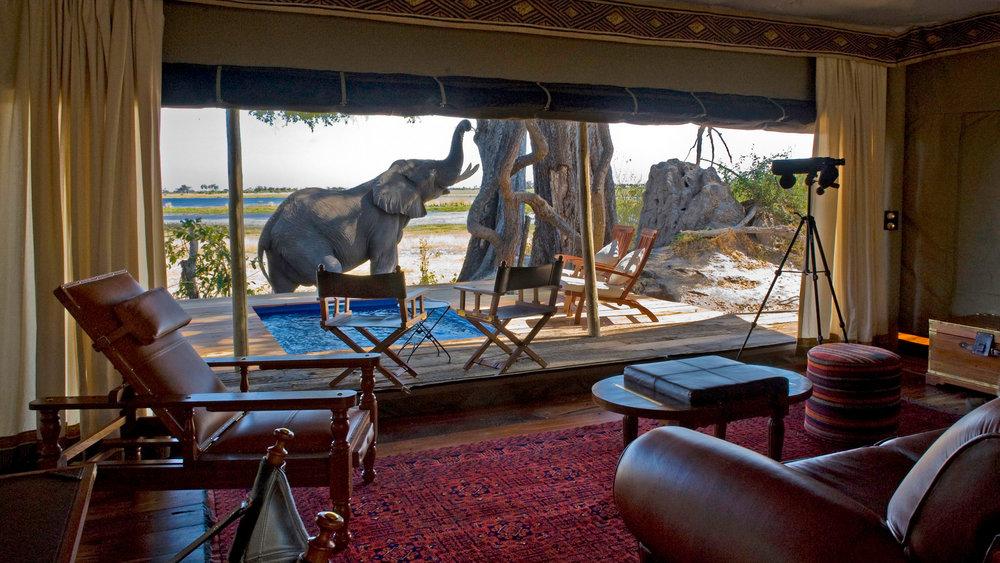 African Safari Experts Jacks Camp Makgadikgadi pans botswana africa