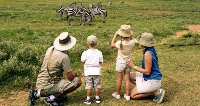 family safari adventure -