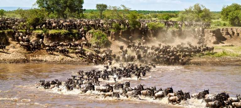 african-safari-experts-wildebeest-migration-tanzania