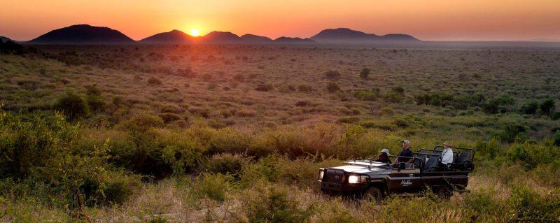african safari experts