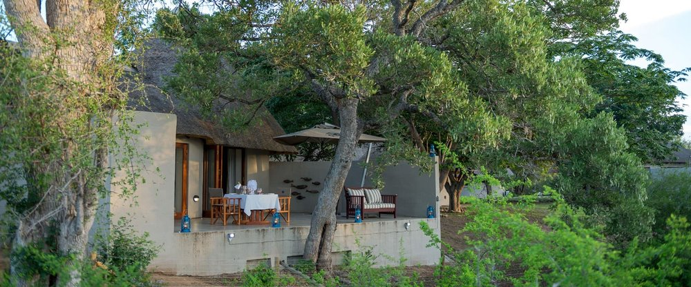 african safari experts machaton private camp timbavati south africa