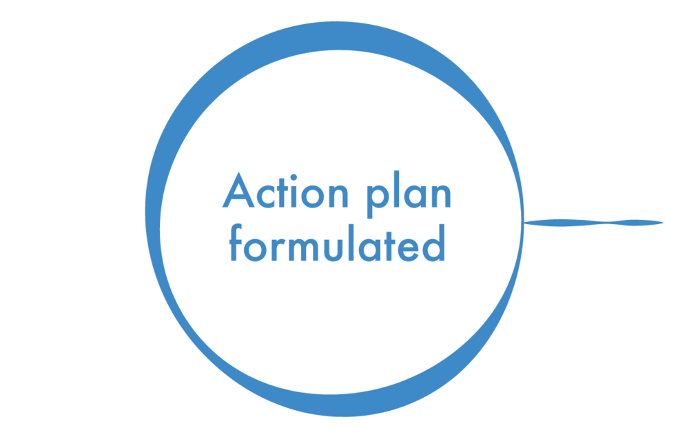 action plan circle-03.png