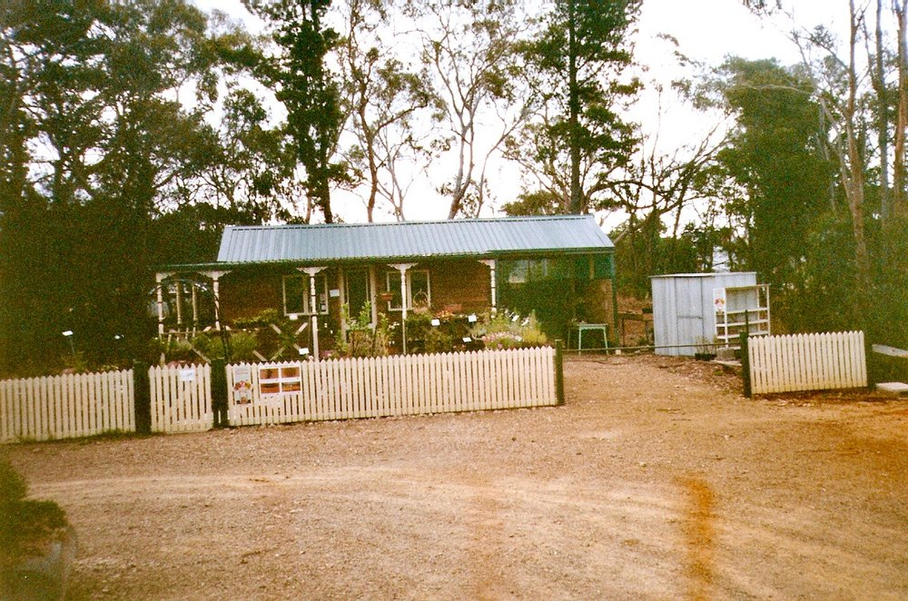 Tyabb Village nursery mid-1990s.