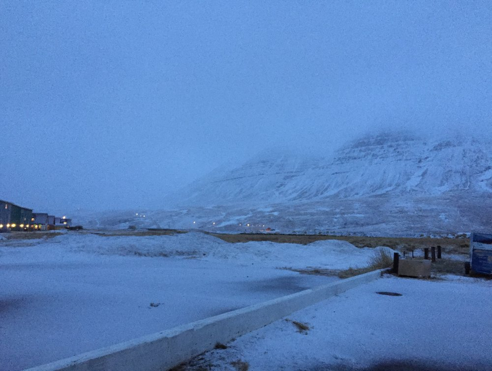 snowing 12.1.19.jpg