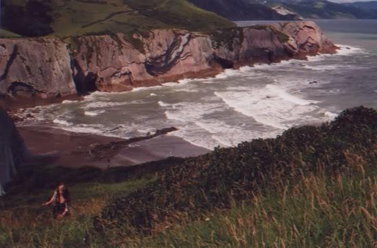 Basque, 2010
