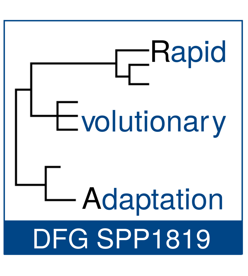 DFG SPP1819 - Rapid Evolutionary Adaptation.png