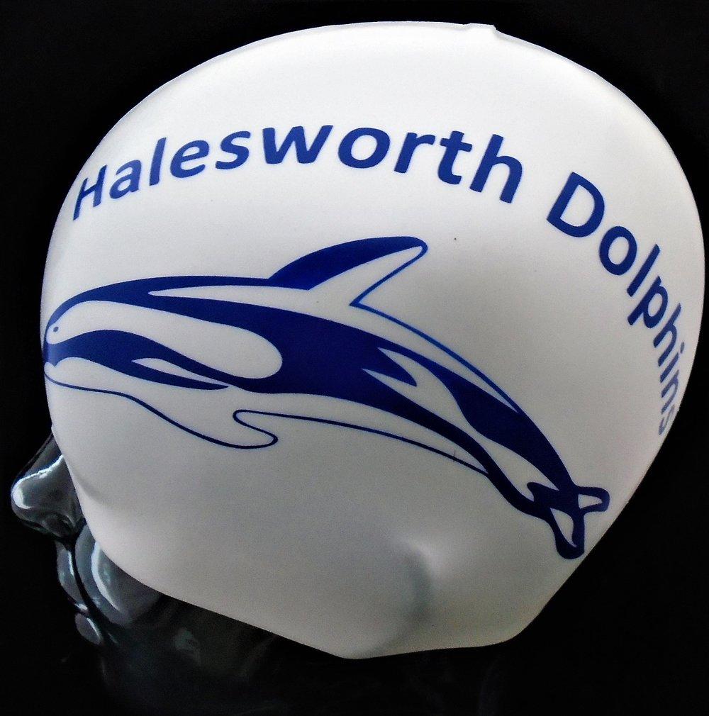 Halesworth Dolphins.jpg