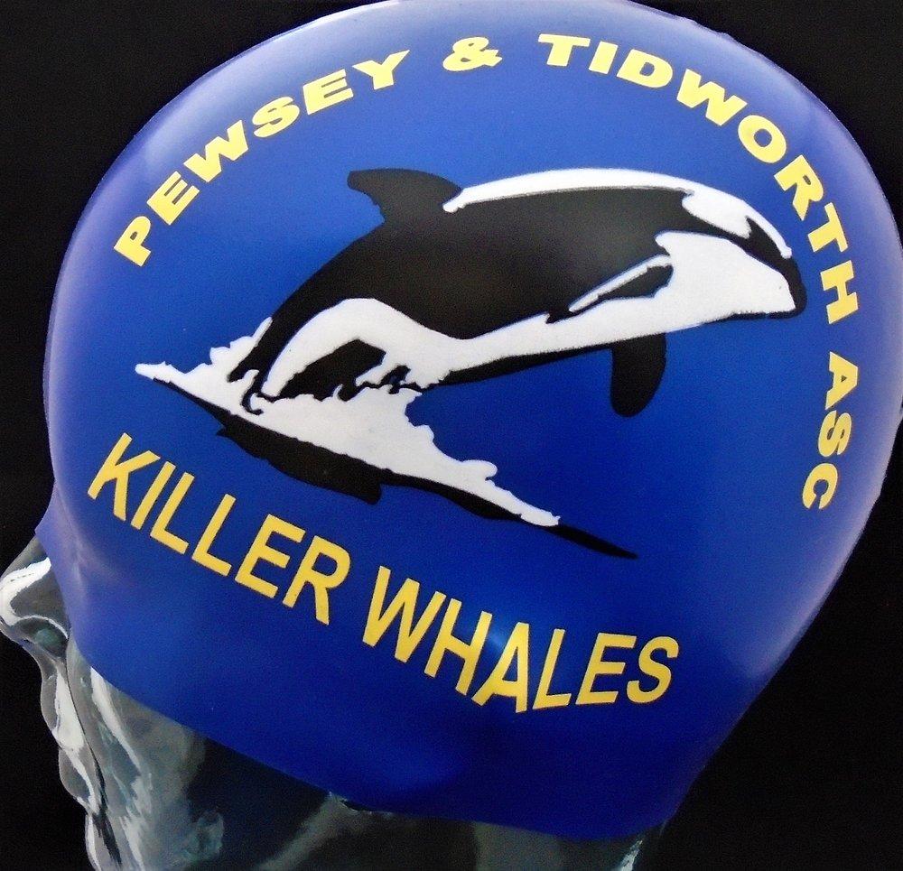 Pewsey and Tidworth Killer Whales.jpg