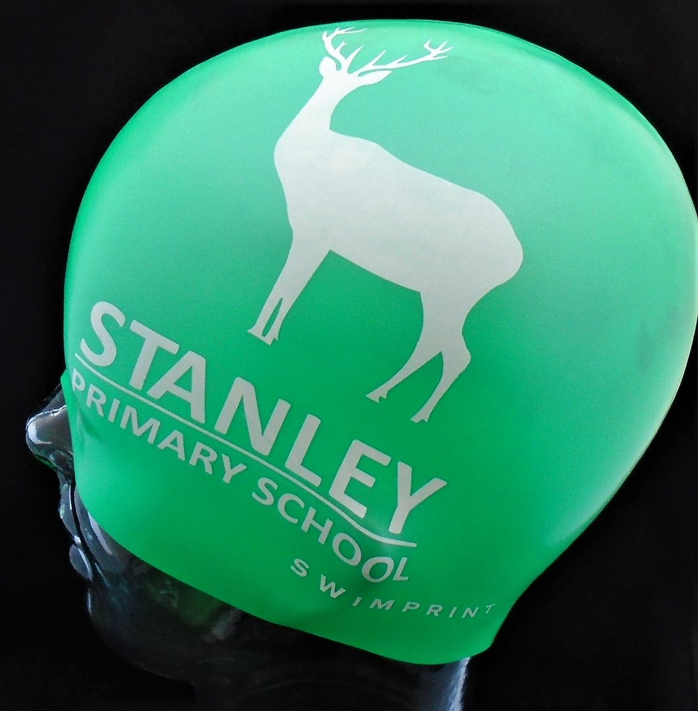 Stanley Primary School.jpg