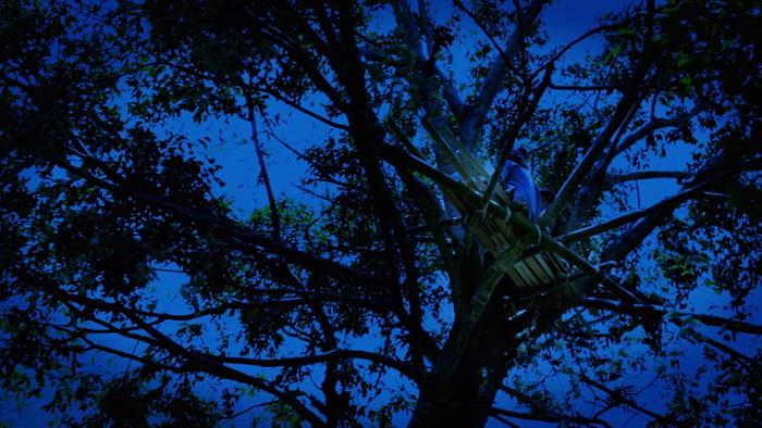 Forest-Spirit