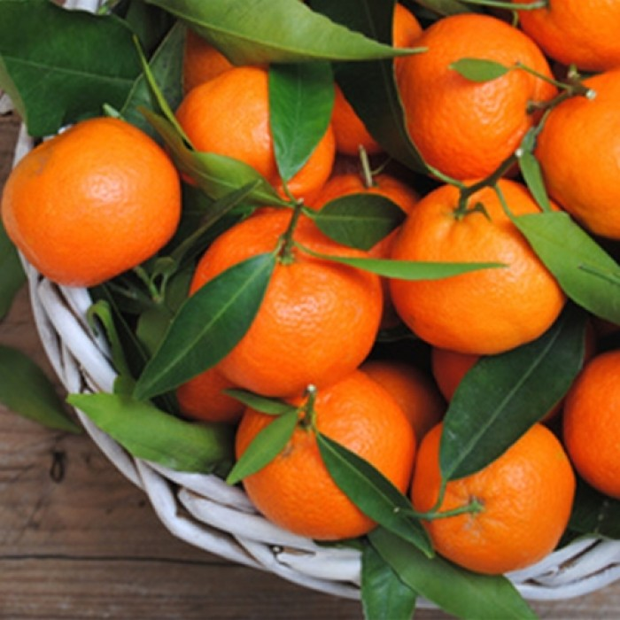 Orange Mandarin-700x700.jpg