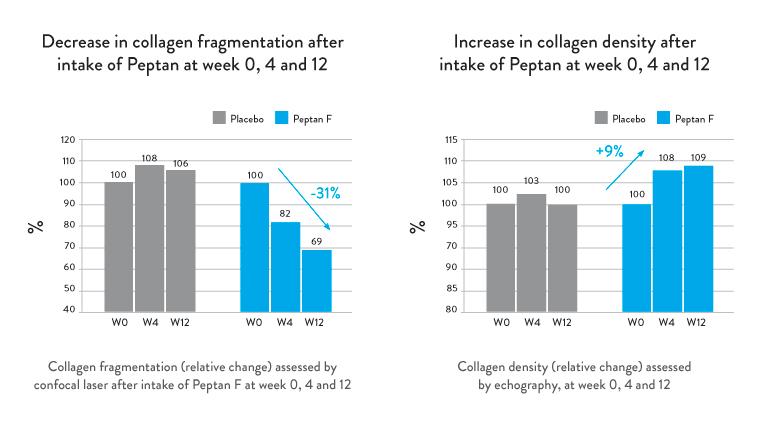 Peptan-Collagen-Table-v2.jpg