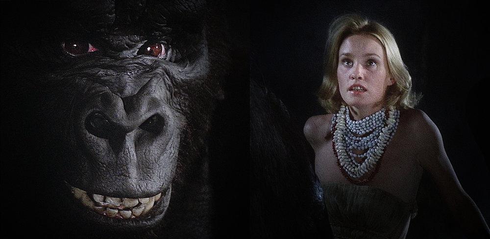 Flashback (Kong)