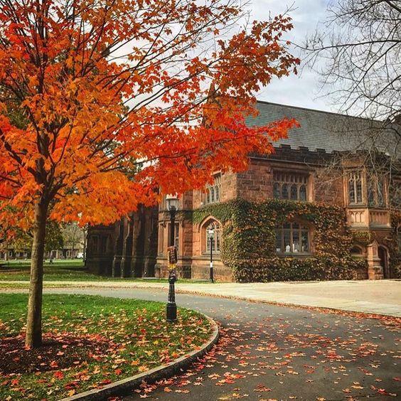 Princeton University c/o @ princeton_university