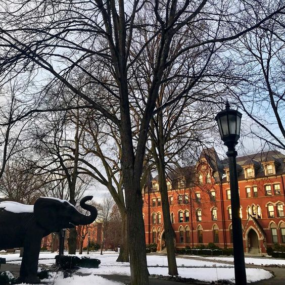 Tufts University, c/o @ tuftsuniversity