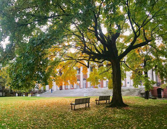 Vanderbilt University, c/o @ alyssaajancc