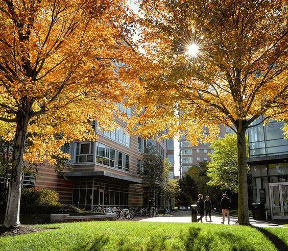 Boston College c/o @ bostoncollege