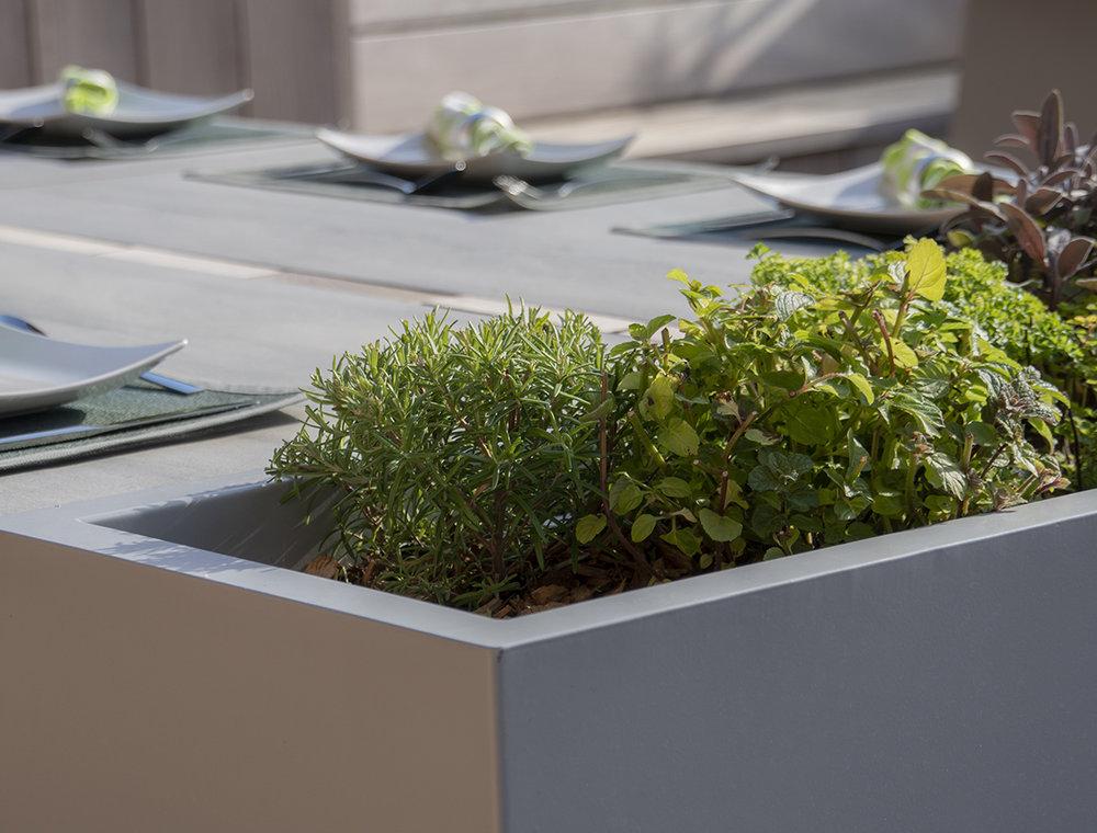 Herb garden -