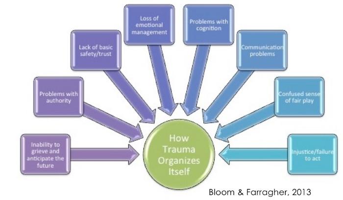 Trauma Organized Systems