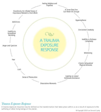 Trauma Exposure Response