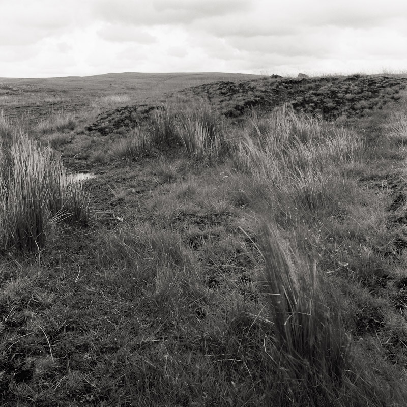 Reclaimed strip mine, Llwynypia, Tonypandy, Wales, 1990