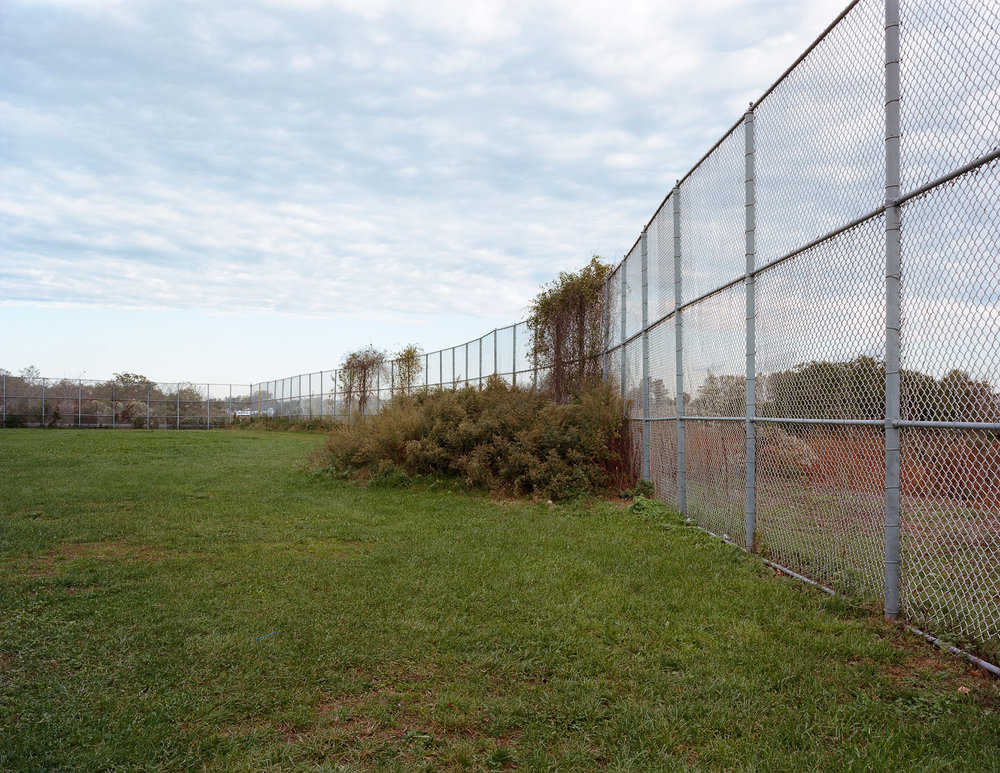 Fence and overgrowth, Bergen Beach, Brooklyn, New York, 2011
